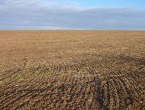 Ploughed field with brown soil Stock Image