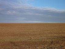 Ploughed field with brown soil Royalty Free Stock Photo