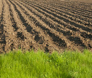 Ploughed field end Stock Photography