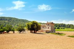 Ploughed field with fruit trees at traditional house Stock Photo