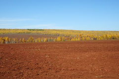 Ploughed field. Stock Images