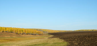 Ploughed field. Stock Image