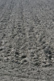 Ploughed field near po river. Sunny rows of grey clods in ploughed field near po river,  parma countryside, emilia Stock Photos