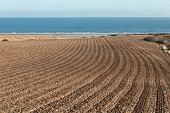 Ploughed Field. A Ploughed Field by the Seaside Stock Image