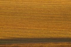 Ploughed field in side light Stock Photography