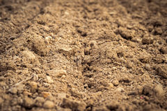 Ploughed field, soil close up, agricultural background Royalty Free Stock Image