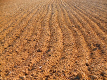 Ploughed field in spring Royalty Free Stock Images