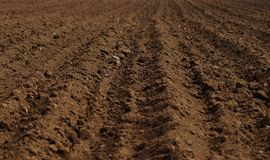 Ploughed field in spring prepared for sowing. Earth texture. Rustic background Royalty Free Stock Photo