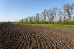 Ploughed field. Spring scene in central Ukraine Royalty Free Stock Photo