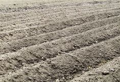 Ploughed field, spring time before planting royalty free stock images