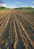 Ploughed field in spring verti Stock Image