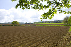 Ploughed field with tractor in distance Royalty Free Stock Image