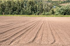 View of a Ploughed Field on a Sunny Summer Day Royalty Free Stock Photo