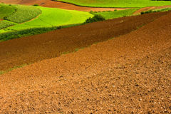 Free Ploughed Fields Royalty Free Stock Photos - 12273618