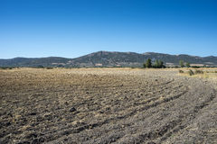 Ploughed fields in La Mancha, Spain Royalty Free Stock Images