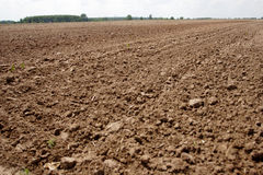 Ploughed land. The field ploughed up the ground Stock Photography