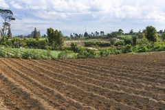 Ploughed Land. Ploughed field ready for seed sowing Royalty Free Stock Images