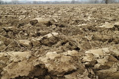 Ploughed land. In winter time along the river bank Stock Images