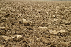 Ploughed land Stock Images