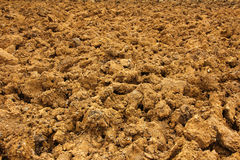 Ploughed red clay soil agriculture fields Stock Photography