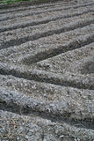Ploughed rice field Stock Images