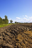 Ploughed soil Royalty Free Stock Image