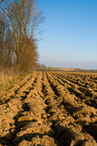 Ploughed soil royalty free stock photography