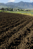 Ploughed soil agriculture fields Stock Photography