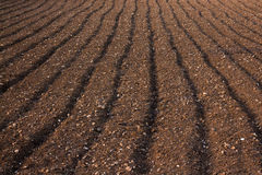 Ploughed soil in a field in Malta. Close up abstract of ploughed soil in a field in Malta Royalty Free Stock Photography