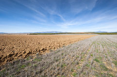 Ploughed and stubble fields Royalty Free Stock Image