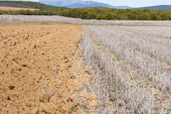 Ploughed and stubble fields Stock Photography