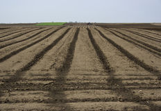 Ploughing. Of land with tractor in spring Royalty Free Stock Image