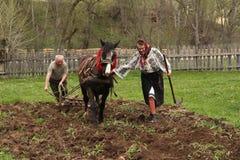 Ploughing do cavalo Foto de Stock