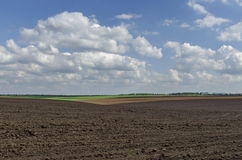 Ploughing field in spring Stock Image