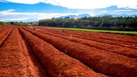 Ploughing o campo Fotos de Stock Royalty Free