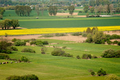 Ploughing o campo Fotografia de Stock Royalty Free