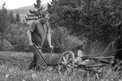Ploughing without pollution. Traditionally horse pulled ploughing, without machines pollution in Harghita county, Romania. Artisitc black and white photo Stock Image