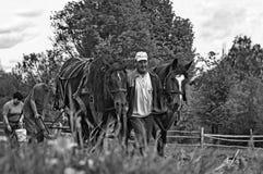 Ploughing tradicional sem poluição Foto de Stock