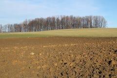 Ploughland το φθινόπωρο Στοκ Εικόνες