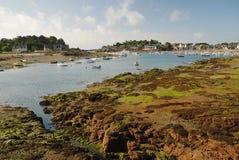 Ploumanach, Bretagne, Frankrijk Stock Afbeeldingen