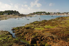 Ploumanach Brittany, Frankrike Arkivbilder