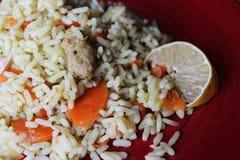 Plov Piatto saporito fresco del vegano aumento con la carota, la carne della soia e l'aglio fotografie stock libere da diritti