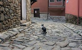 Plovdiv in kleuren Stock Afbeelding