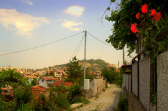 Plovdiv quiet street roses Stock Photography