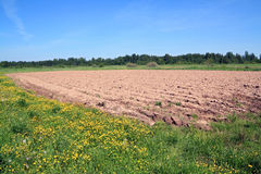 Plow field Royalty Free Stock Photos