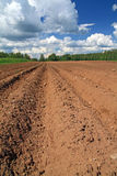 Plow field Stock Photography