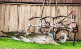 Plow on the ground at barn Royalty Free Stock Images