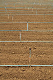 Plow land and irrigation system Stock Images