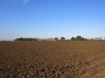 Plow soil in autumn. Newly plowed soil with colorful autumn woodland under a blue sky in yorkshire Stock Photos