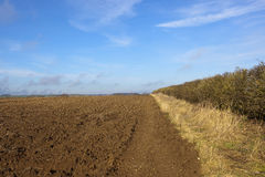 Plow soil and winter hedgerow Stock Photography